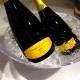 Cava Wines Tasting